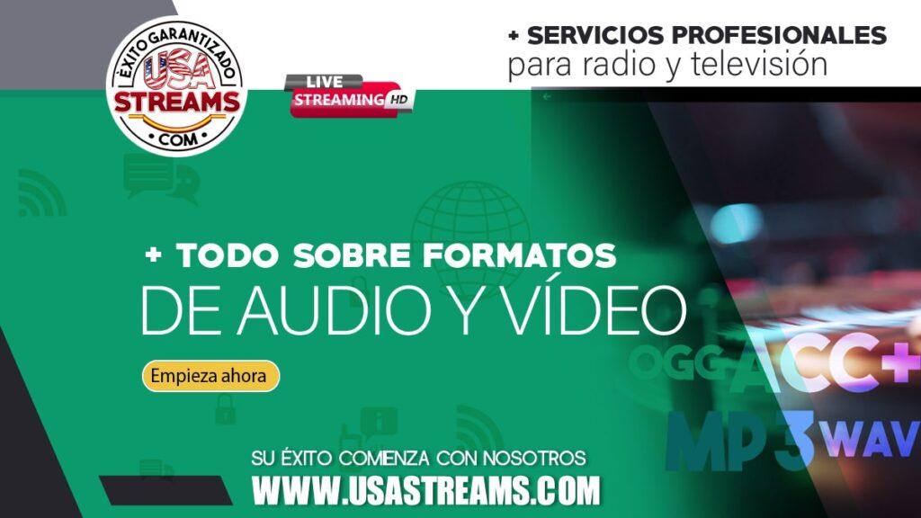 resumen sobre formatos de audio y video