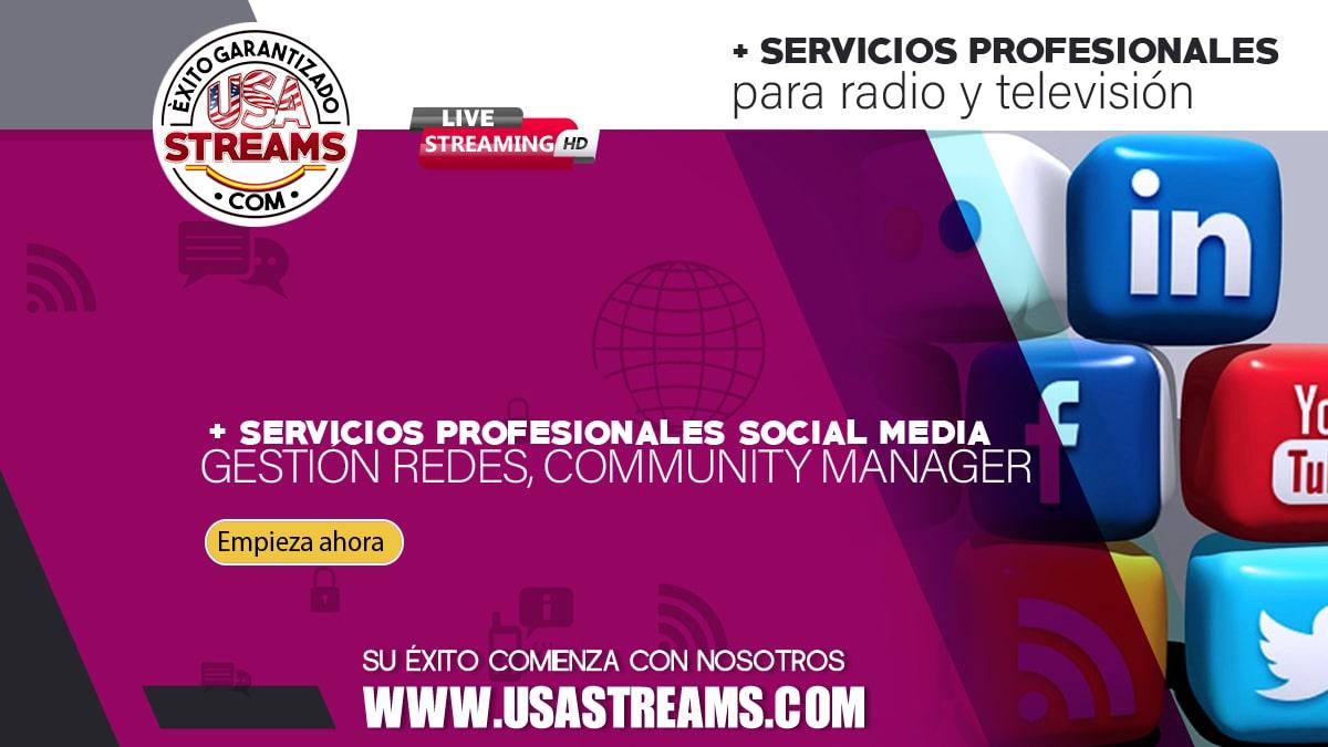 Servicios de gestión de redes sociales, Community Manager profesional