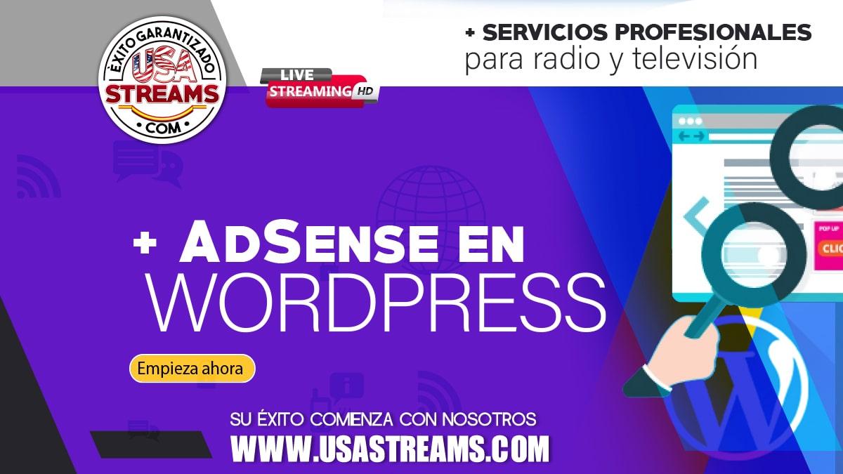 Cómo colocar publicidad con Google AdSense en WordPress